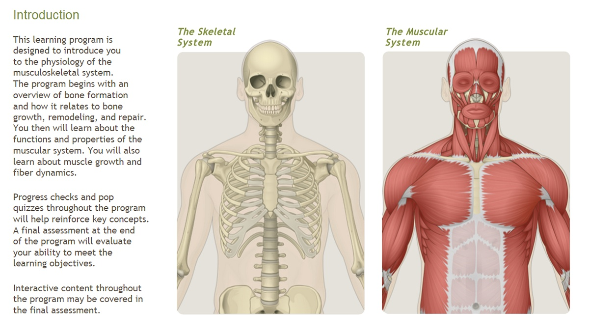 Understanding the Physiology of the Musculoskeletal System